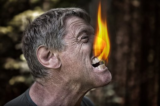Bite, Fire, Coal, Angry, Man, Nature, Animal, Red, Work