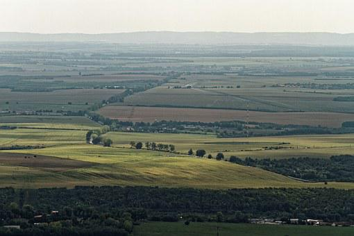 Agriculture, Aerial View, Aerial, View, Landscape