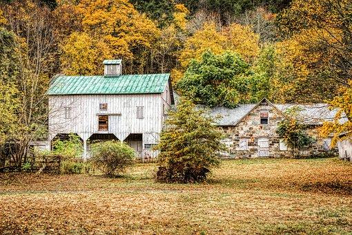 House, Barn, Dutch, Country, Fall Foliage, Scene