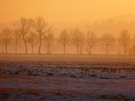 Wintry, Sunset, Trees, Back Light, Hazy, Winter, Snow