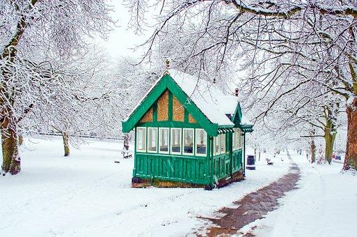 Snowy, Snow, Snowed, Seasons, Winter, Tree