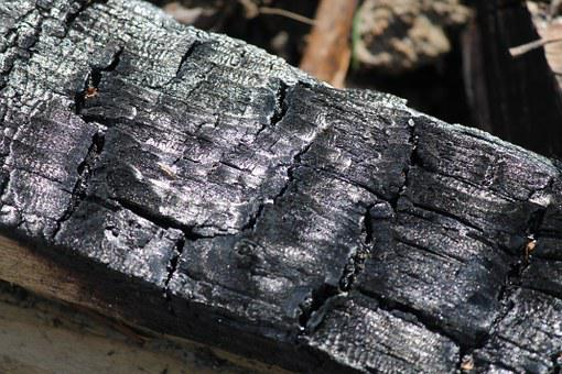 Carbon, Wood, Campfire, Black, Went Out, Fire, Firewood