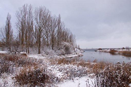 Winter Landscape, Winter, Snow, Denmark, White, Frost