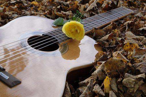Guitar, Instrument, Musical Instrument