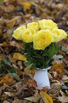 Roses, Flowers, Bouquet, Autumn, Leaves, Yellow, Vase