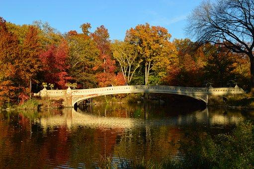 Central Park, Landscape, New York, Manhattan, Autumn
