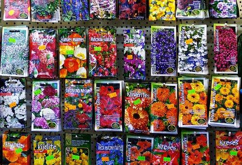 Seed, Sämerei, Samentütem, Bags, Seeds, Sowing