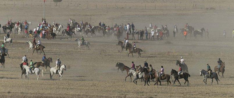 Bulls, Horses, Running Of The Bulls, Spain, Rider, Spur