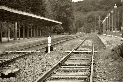 Old Station, Station, Korail, Korea, Gyeonggi Do, Cat