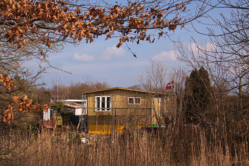 Allotment, House, Hut, Autumn, Wood, Withered, Leaves