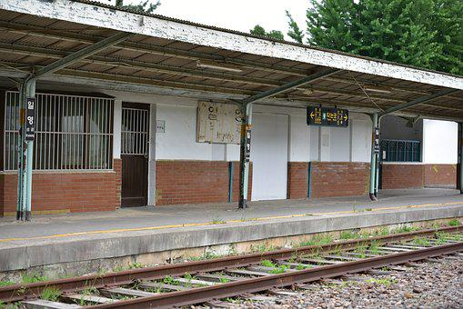 Old Station, Station, Korail, Korea, Gyeonggi Do, Cat
