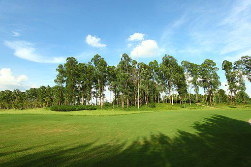 Golf Course, Green Space, Landscape