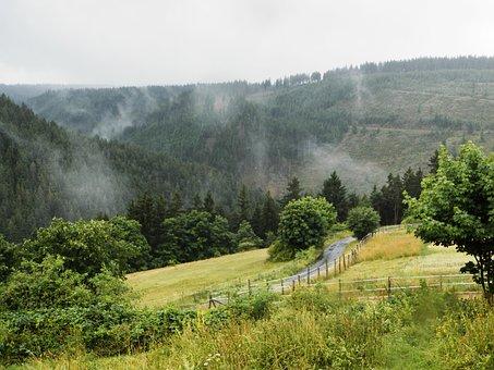 Fog, Mountain, Landscape, Rising Fog, Green, Forest