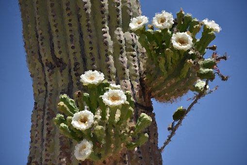 Cactus, Impressionist, Painting, Desert, Flowers