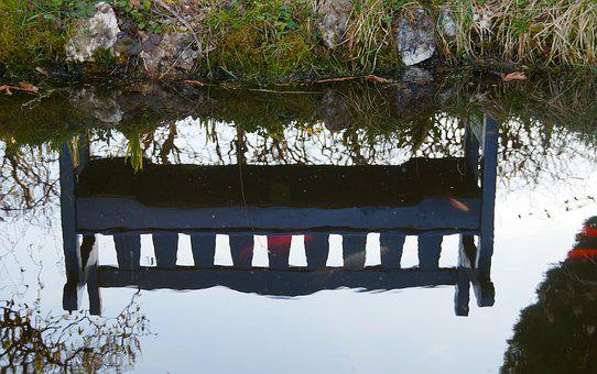 Mirroring, Water Reflection, Garden Pond, Bench, Fish