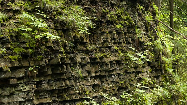Rocks, The Stones, Mountains, Wall, Vegetation, Plants
