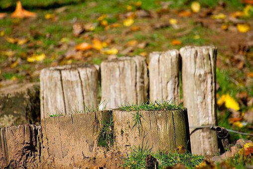 Fence, Post, Wooden Posts, Wood Pile, Pile, Pasture
