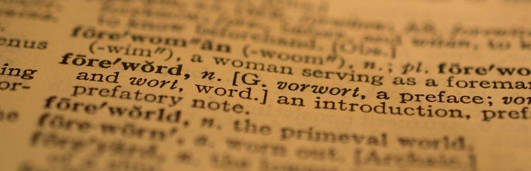 Dictionary, Words, Webster, Vintage, Antique, Paper
