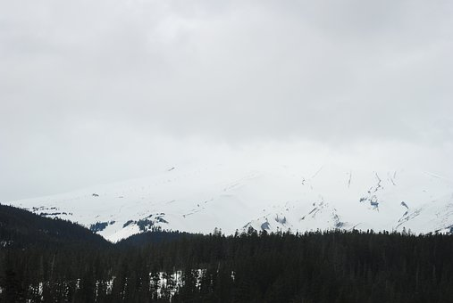 Winter, Portland, Oregon, Northwest, Pacific, Snow