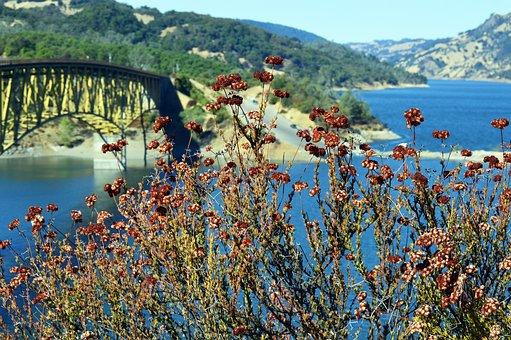 Sonoma, County, Valley, Lake Sonoma, Sonoma Lake