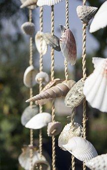 Mussels, Thread, Art, Craft