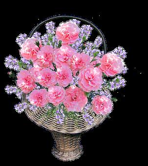 Basket, Carnations, Pink, Arrangement