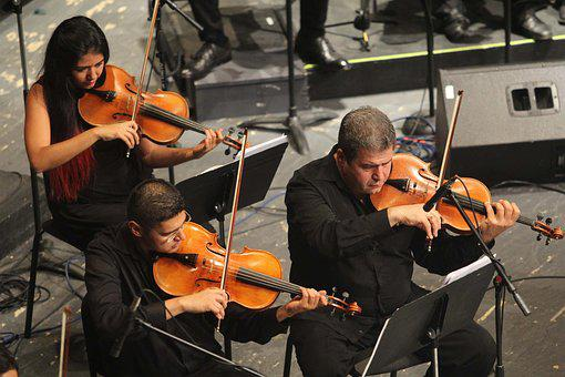 Orchestra, Music, Musical, Concert, Instrument