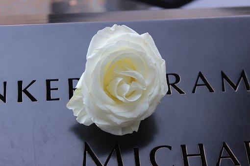 Ground Zero, New York, Nyc, September, Memorial, Rose