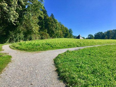 Rumensee, Nature, Meadow, Zurich, Alpine, Mountains