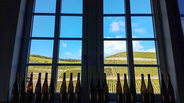 Window, View, Mountains, Wine, Vineyard, Nature