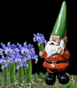 Gnome, Iris, Garden