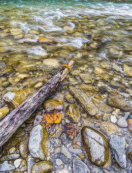 Water, River, Stones, Wave, Leaves, Autumn, Alpine