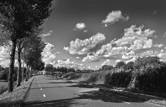 Road, Rural, Travel, Trip, Journey, Grass, Trees
