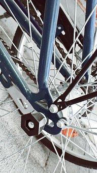 Bike, Spoke, Wheel, Rim, Bicycle Spokes, Cycling