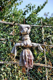 Scarecrow, Garden, Doll, Figure, Agriculture
