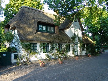 Home, Reed, Thatched Roof, Holstein, Thatched