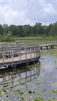 Wood Bridge, Water, Bridge, Wood, Landscape, Summer