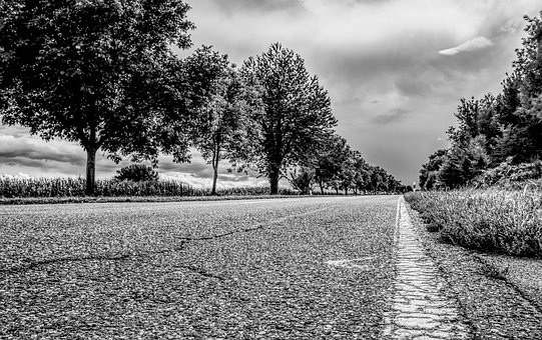 Road, Asphalt, Landscape, Trees, Forest, Roadway, Tar
