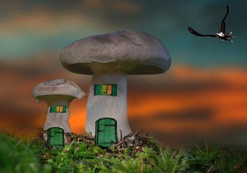 Mushroom, House, Mushroom House, Fantasy, Photomontage