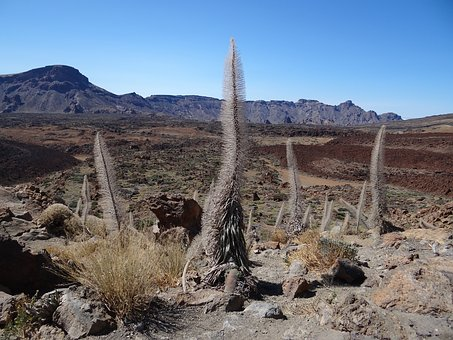 Tenerife, Desert, Teide National Park