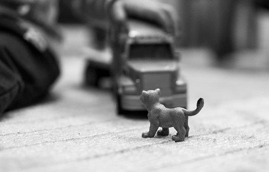 Toy, Baby, Child, Game, Play, Tir, Truck, Al, Tiger