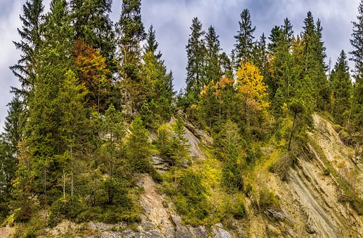 Mountain, Trees, Rock, Autumn, Color, Beautiful, Summit