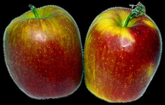 Apple, Fruit, Pome Fruit, Culture Of Apple, Malus