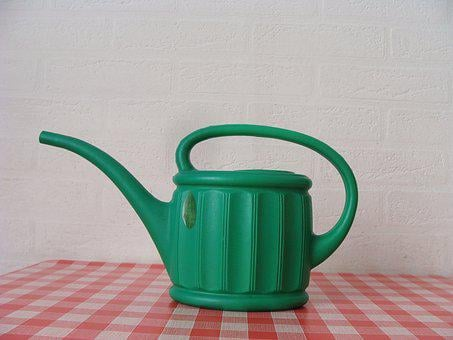 Watering Can, Garden, Box, Grass, Wood, Spring