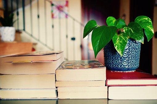 Books, Leisure, Reading, Culture, Plants, Teacher