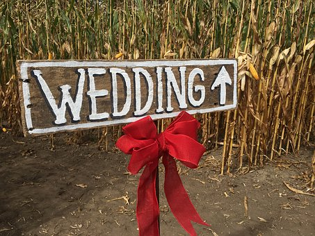 Wedding, Corn Field, Rustic, Country, Rural, Love