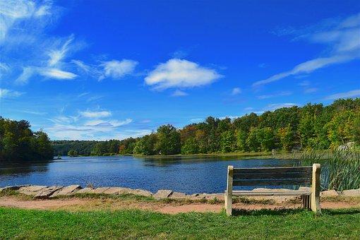 Bench, Park, Lake, Park Bench, Green, Outdoor, Grass