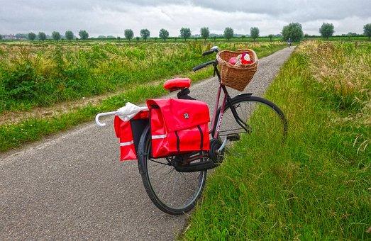 Bicycle, Cycle, Bike, Transportation, Biking, Vehicle