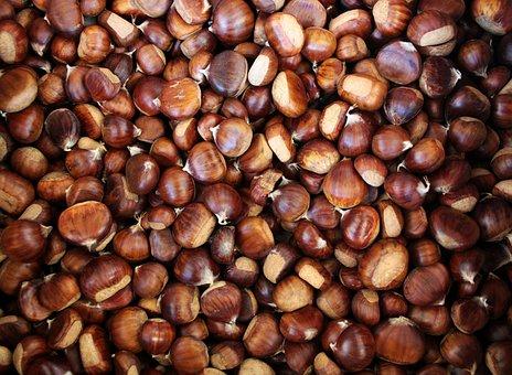 Chestnuts, Chestnut, Autumn, Season, Nature, November