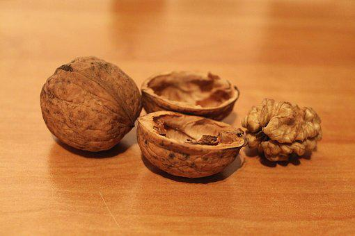 Walnut, Walnuts, Cut In Half, Christmas, Advent